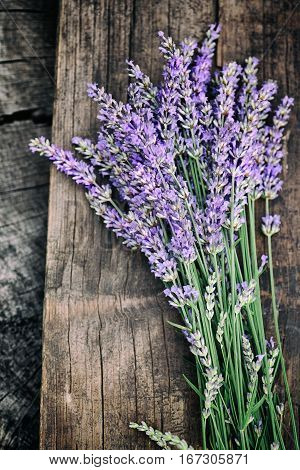 Fresh lavender over wooden background. Summer floral background with lavender flowers and wood.