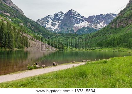 the scenic landscape of the Maroon Bells near Aspen Colorado in summer