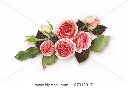 Pink rose flowers arrangement on white background. Filtered version. Top view. Flat lay.
