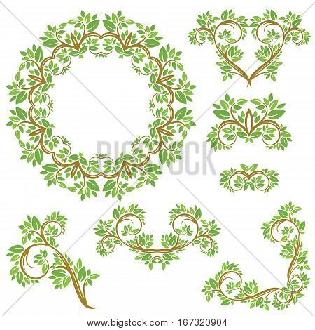 Set of Floral seamless detailed ornaments borders frames vignettes with olive tree leaves and curled branches isolated on white background.