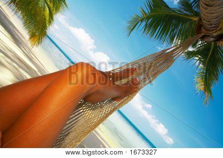 Tropic Hammuck