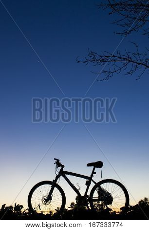 Silhouette of MTB bike at sunset under tree on blue sky with venus planet