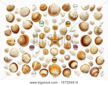 Pattern of seashells glass beads and starfish. Isolated on white. top view