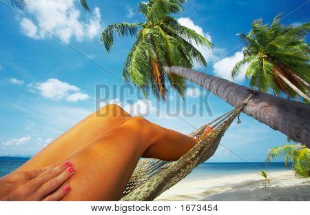 Tropic Swing