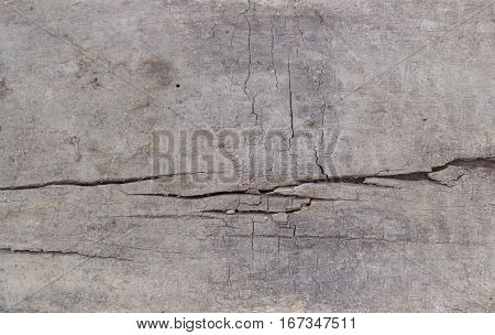 texture of the old board with cracks and rot. board with cracks