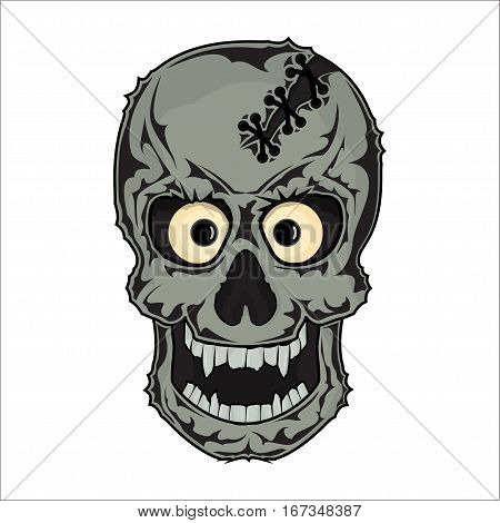 The bones of the skull human skeleton illustration