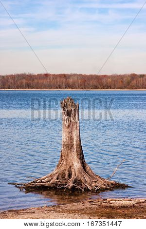 A dead tree stump in the water of a reservoir lake