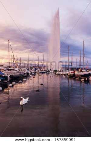 Jet d'Eau and harbor in Geneva. Geneva Switzerland.