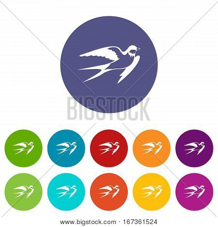 Barn swallow set icons in different colors isolated on white background