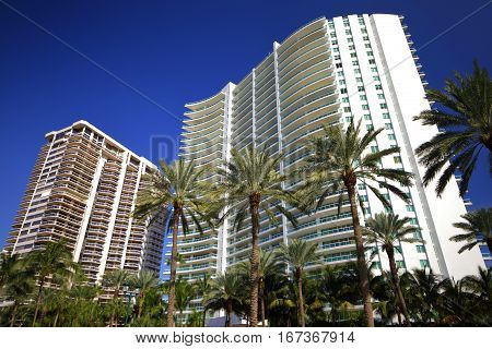 Stock photo of buildings on lbue sky with palm tree in the foreground