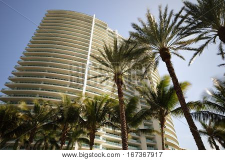 Stock photo of architecture and tropical palm trees