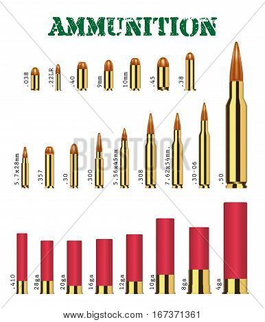 real set of many types of gun ammunition vector