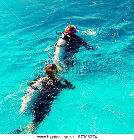 Couple of divers swim in the blue ocean on a sunny day