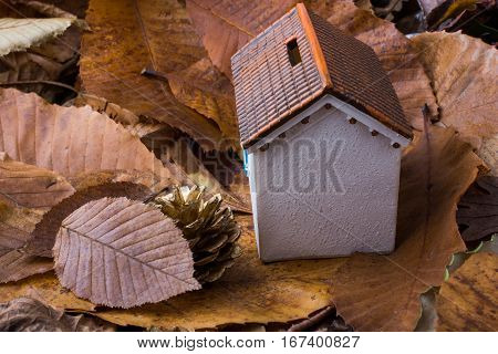 Little Model House Places On An Autumn Leaves
