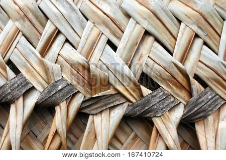 Coconut Palm Leaves Weaving Backgroun