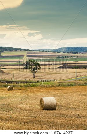 Outback Agricultural And Farming Field