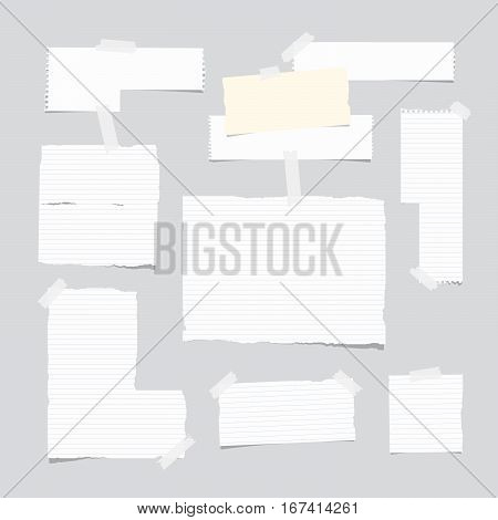 Ripped ruled note, notebook, copybook paper sheet, strips stuck with white sticky tape on light gray background.