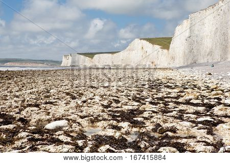Seven Sisters National Park beach in a low tide, Sussex, UK