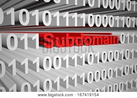 subdomain in the form of binary code, 3D illustration