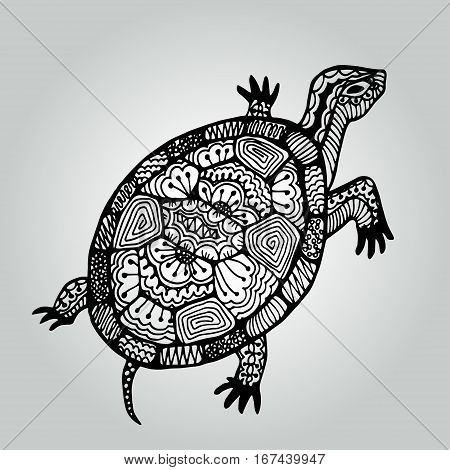 Handdrawing doodle turtle. Wildlife collection. Vector illustration