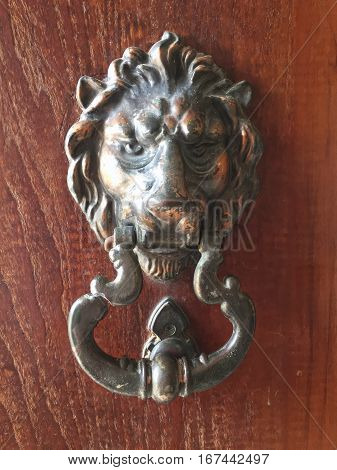 Handle lion on wood background of door decoration