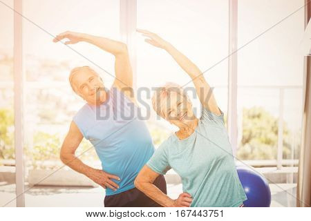 Portrait of smiling senior couple exercising at home