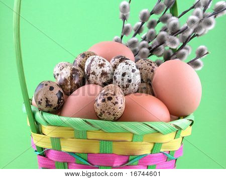 basket full of eggs and willow twig