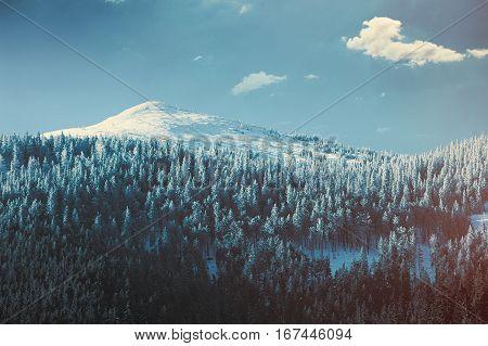 View On Winter Mountains Tatry, Poland
