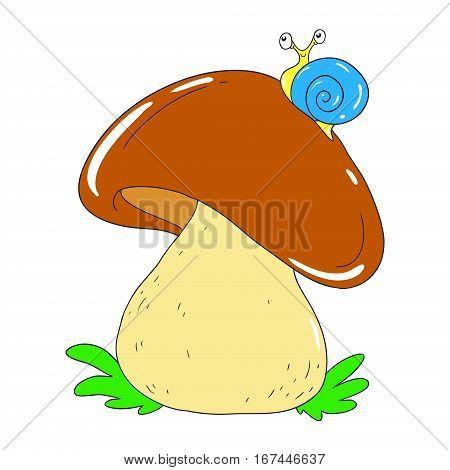 Edible mushroom white. Mycelium Vector Mushroom isolated