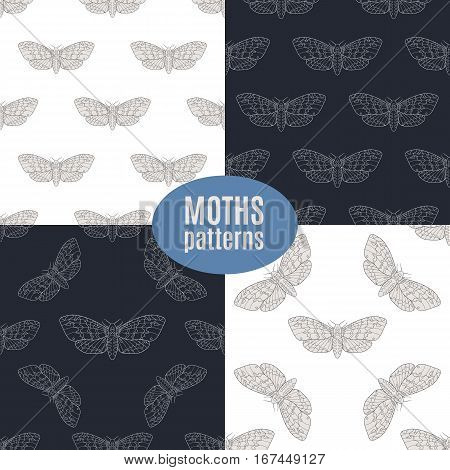 Line art dead head moths patterns. Modern vector backgrounds