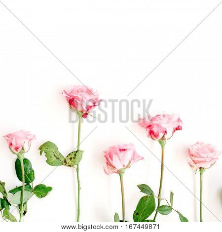 Pink roses on white background. Flat lay top view. Valentine's background