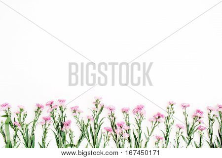 Pink wildflowers on white background. Flat lay top view. Creative nature concept