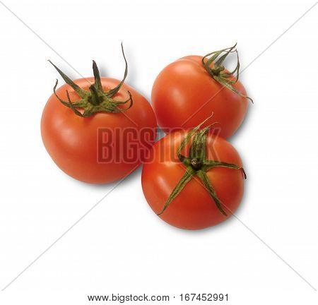 isolated organic natural tomato on white background - 3 tomatoes
