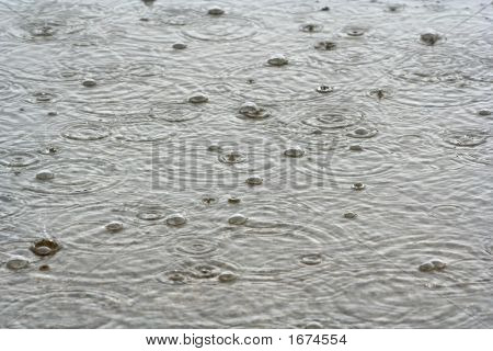 Rain Drops In The Water