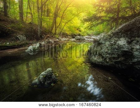 Forest And Mountain River At Sunset. Colorful Landscape