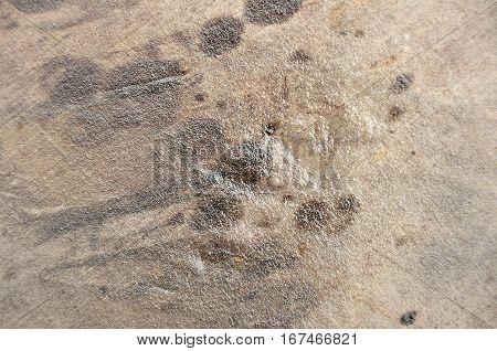 Textile texture. Textile background. Natural texture concept.