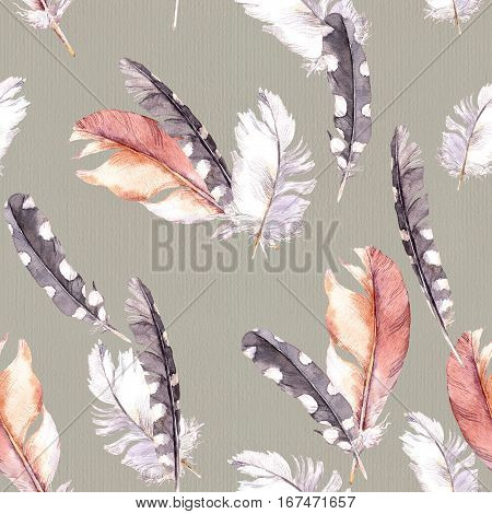 Feathers drawing. Watercolor seamless pattern. Grey paper background