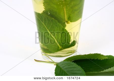 beverage caffeine clear cold cool cube diet drink flavor food fresh glass green healthy herb herbal ice iced indulge infuse leaves liquid mint natural nutrition party refreshing refreshment sip southern spearmint spice sprig steep stimulant summer sun swe poster