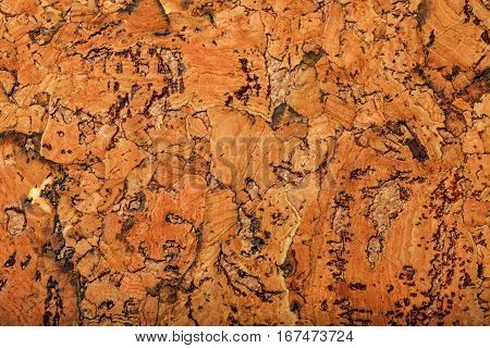 Cork board texture or background, large elements, closeup