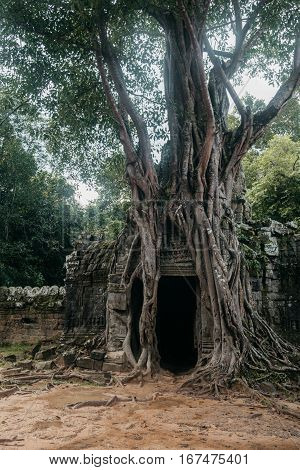 Entrance to ancient Ta Som temple at Angkor complex, Cambodia