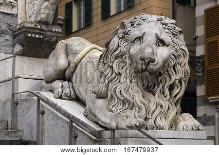 Lion statue in the cathedral of Saint Lorenzo in Genoa, Italy