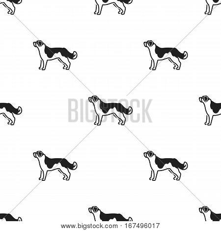 St. Bernard dog vector illustration icon in black design