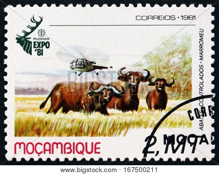 MOZAMBIQUE - CIRCA 1981: a stamp printed in Mozambique shows African Buffalo and Helicopter World Hunting Exhibition Plovdiv Bulgaria circa 1981