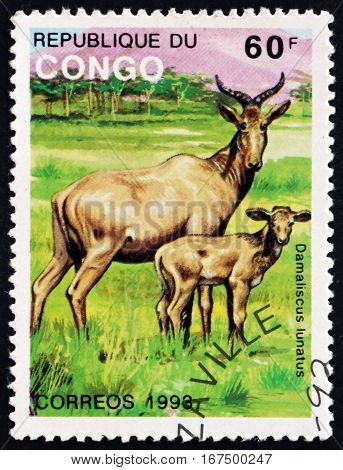 CONGO - CIRCA 1993: a stamp printed in Congo shows Common Tsessebe Damaliscus Lunatus Animal circa 1993