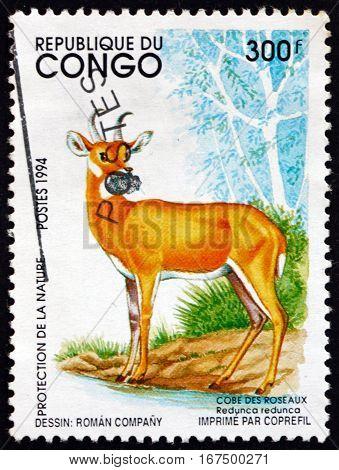 CONGO - CIRCA 1994: a stamp printed in Congo shows Bohor Reedbuck Redunca Redunca an Antelope Native to Central Africa circa 1994