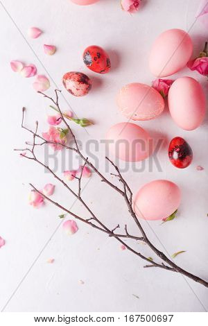 Pink eggs on light background. Copyspace. Still life photo of lots of pink easter eggs.Background with easter eggs. Pink eggs and roses. Easter photo concept