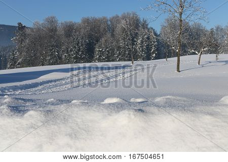 Cross Country Ski Tracks in Austria Winter Mountains.