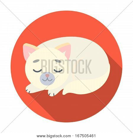 Sleeping cat icon in flat design isolated on white background. Sleep and rest symbol stock vector illustration.