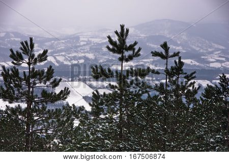 Viewpoint at winter landscape from mountain Kozomor, Serbia