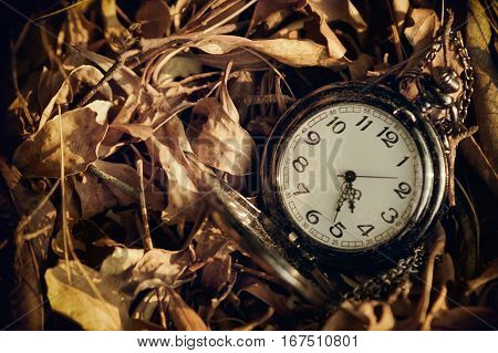 Antique pocket watch against the background of dried leaves